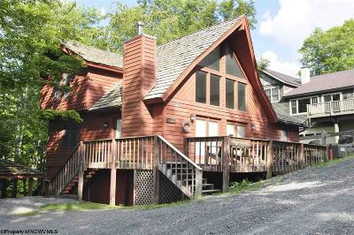 Single Family Home For Sale: 321 Slopeside Road