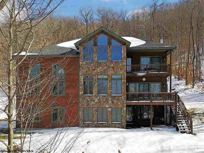 Davis WV Single Family Home For Sale: $699,000