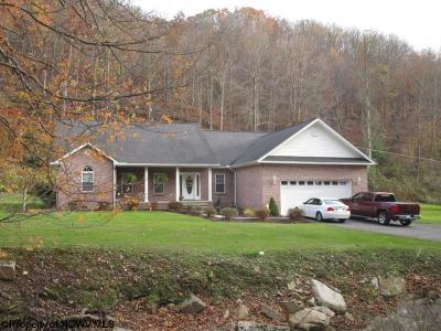 Elkins Single Family Home Contingent: 412 Evans Run Road (Rr)