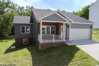 Morgantown Single Family Home For Sale: 17 Banner Place