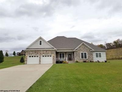 Elkins Single Family Home New: 53 Meadows Run Lane