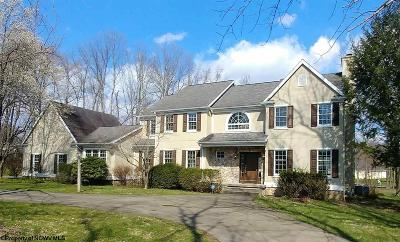 Morgantown WV Single Family Home For Sale: $455,000