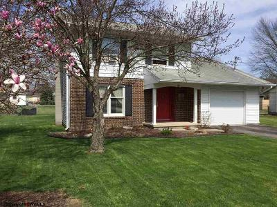 Elkins Single Family Home For Sale: 116 Riverview Drive