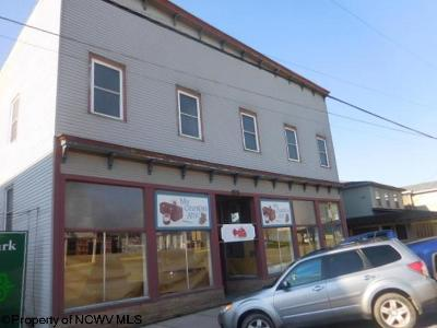 Davis WV Commercial For Sale: $495,000