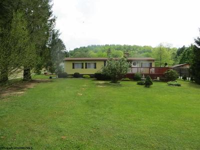 Elkins Single Family Home For Sale: 24 Bruno Drive