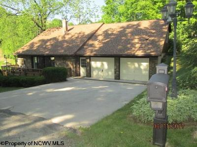 Elkins Single Family Home For Sale: 351 Whippoorwill Drive