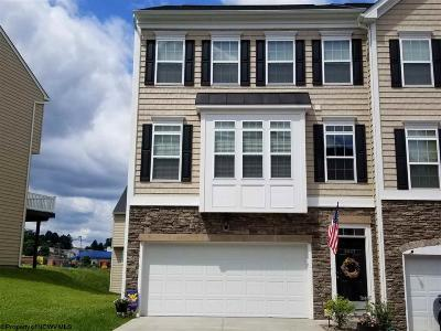 Morgantown Condo/Townhouse For Sale: 3517 Sun Trail