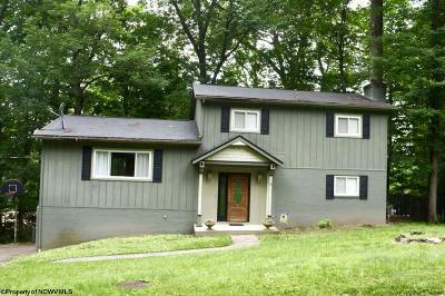 Morgantown Single Family Home For Sale: 11 Chardonnay Drive