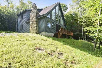 Davis Single Family Home For Sale: 214 Cabin Mountain Road