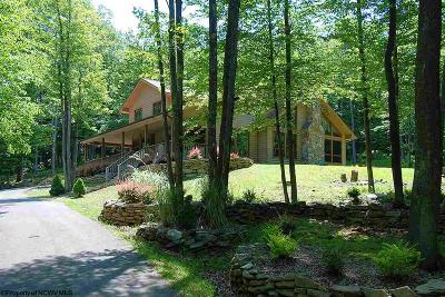 Davis Single Family Home For Sale: 2256 Cabin Mountain Road