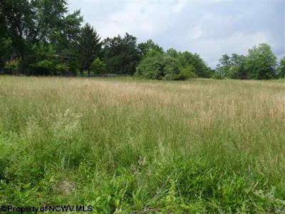 Morgantown WV Residential Lots & Land For Sale: $199,000