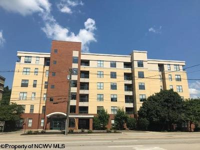 Morgantown Condo/Townhouse For Sale: 1117 University Unit 306 Avenue