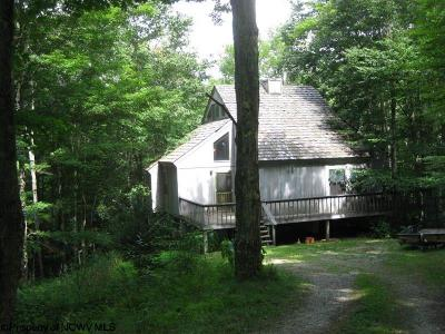 Single Family Home For Sale: 1235 Cabin Mountain Road Drive