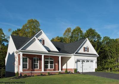 Morgantown Single Family Home For Sale: 63 Lavista Drive