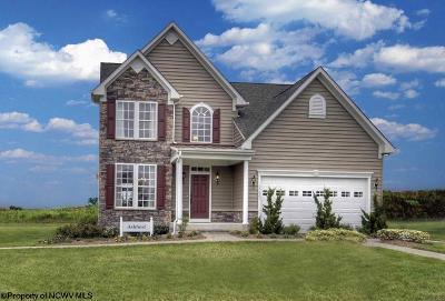 Morgantown Single Family Home For Sale: 51 Lavista Drive