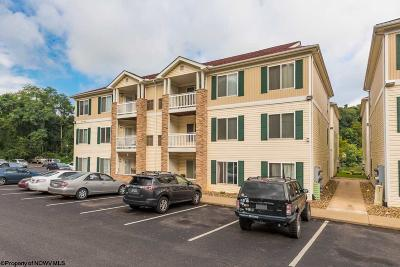 Morgantown Condo/Townhouse For Sale: 1205 University Commons Drive