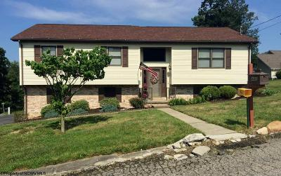 Morgantown WV Single Family Home New: $244,900