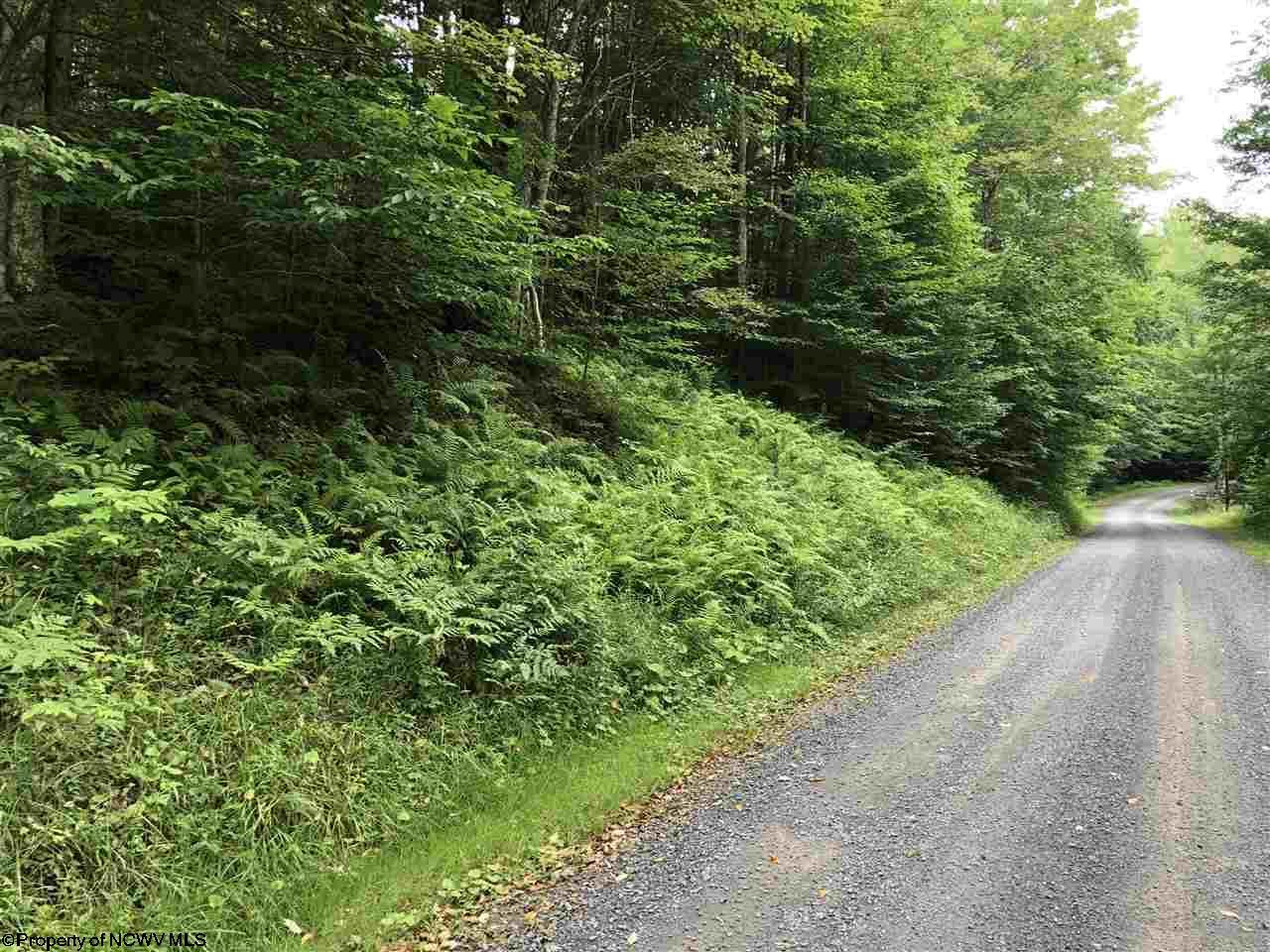 25 Black Bear Trail,