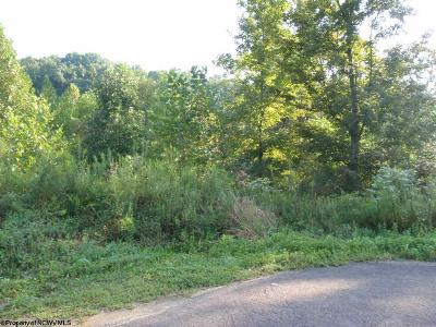 Morgantown WV Residential Lots & Land For Sale: $30,000