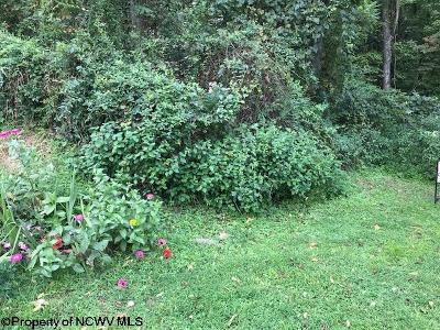 Morgantown WV Residential Lots & Land For Sale: $175,000