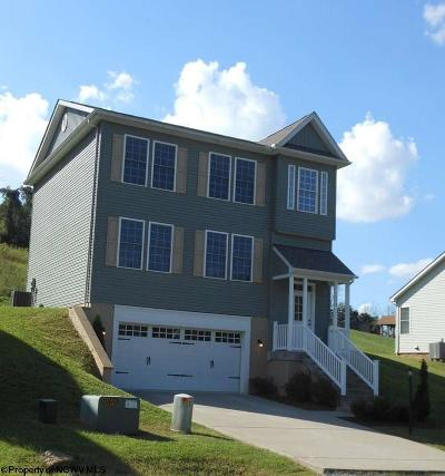Morgantown Single Family Home For Sale: 1038 Olivia Way