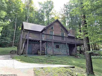 Davis Single Family Home For Sale: 868 Cabin Mountain Road