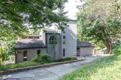 Morgantown Single Family Home For Sale: 729 South Hills Drive