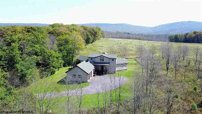 Davis WV Single Family Home For Sale: $585,000