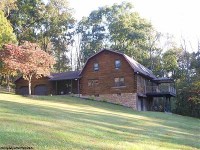 Morgantown Single Family Home For Sale: 120 Sterle Avenue