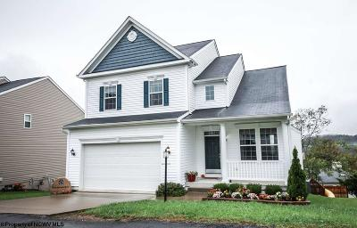Morgantown Single Family Home For Sale: 10 Summers Ridge Road