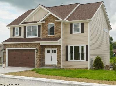 Morgantown Single Family Home For Sale: 115 Canyon Ridge Drive