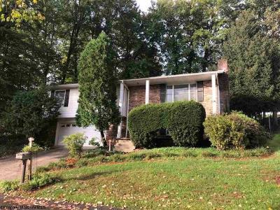 Morgantown Single Family Home For Sale: 1279 Tartan Lane