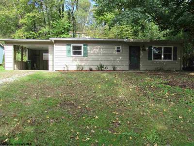 Morgantown Single Family Home For Sale: 1205 Milton Street