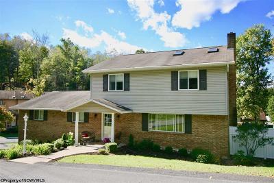 Morgantown Single Family Home For Sale: 124 Morgan Drive