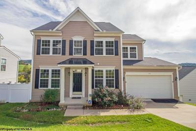 Morgantown WV Single Family Home For Sale: $275,000