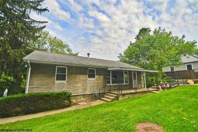 Morgantown Single Family Home New: 1037 Charles Avenue