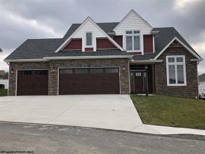 Morgantown Single Family Home New: 204 Chloe Lane