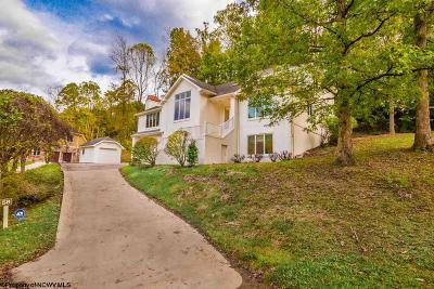 Morgantown Single Family Home For Sale: 58 Brookside Lane