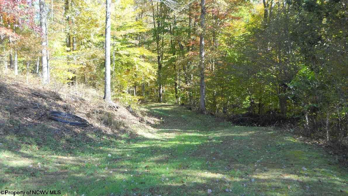 1042 Spruce fork Road,