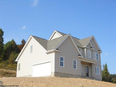 Morgantown Single Family Home For Sale: 509 Tappan Zee Lane