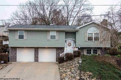 Morgantown Single Family Home For Sale: 989 Vandalia Road