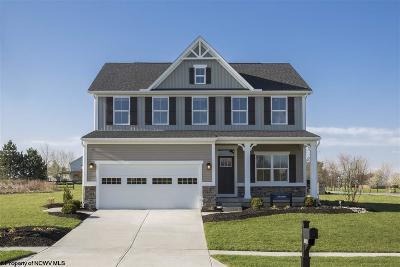 Morgantown Single Family Home For Sale: 57 Lavista Drive