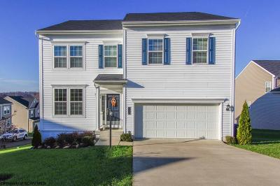 Morgantown Single Family Home For Sale: 110 Summers Ridge Circle