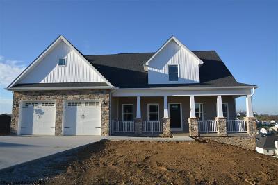 Morgantown Single Family Home For Sale: 706 Slaton Lane