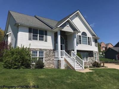 Morgantown Single Family Home For Sale: 44 Mescal Lane West