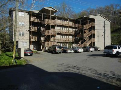 Morgantown Multi Family Home For Sale: 75 Brookhaven Road