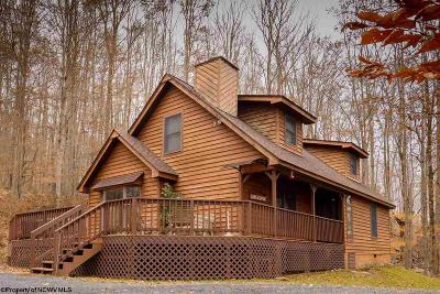 Davis Single Family Home For Sale: 712 Cabin Mountain Road