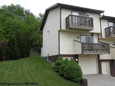 Morgantown WV Condo/Townhouse For Sale: $149,900