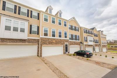 Morgantown WV Condo/Townhouse For Sale: $294,750