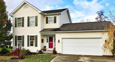 Morgantown WV Single Family Home New: $289,900